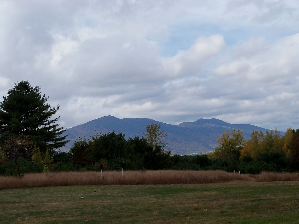 In the Heart of the White Mtns (2)