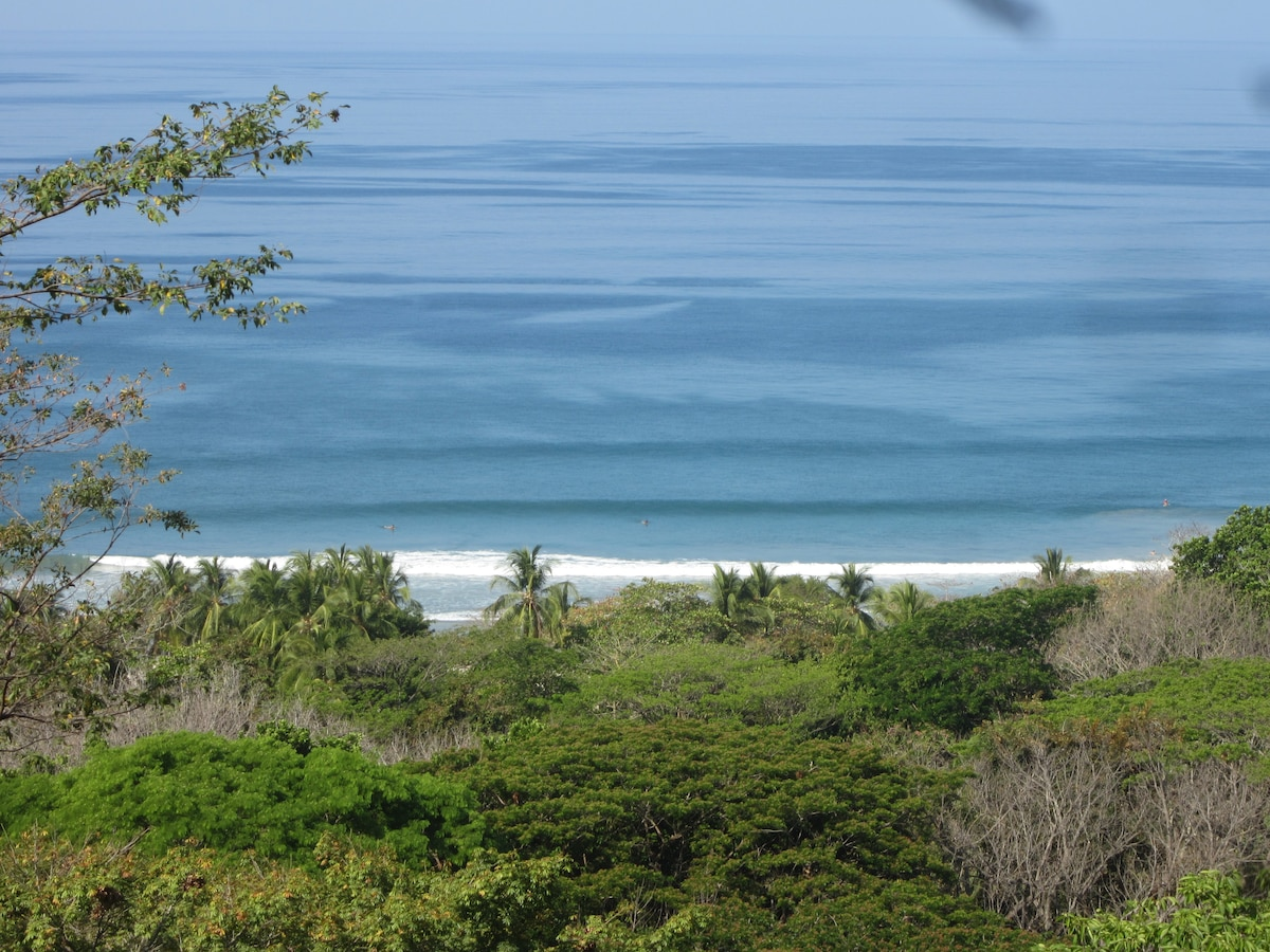 look at those waves ! you can be relaxing at the 'emerald abode' with a cold drink as you watch the surf build to the perfect moment to grab your board. pura vida!