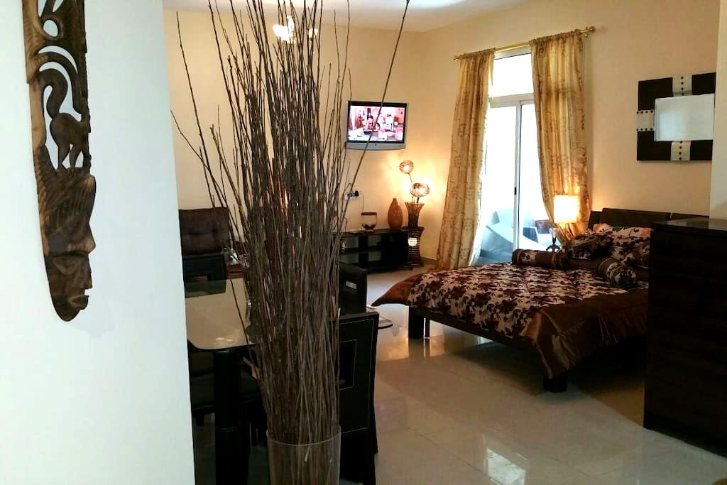 A luxurious fully furnished studio - Ajman