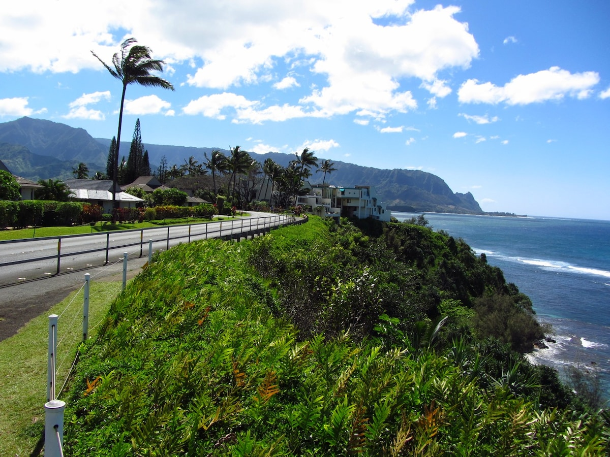 Scenic overlook across street from villa.  Ideal vantage point to take in sunset, witness humpback whales breaching and world class surfers in the breaks just off the coastline.