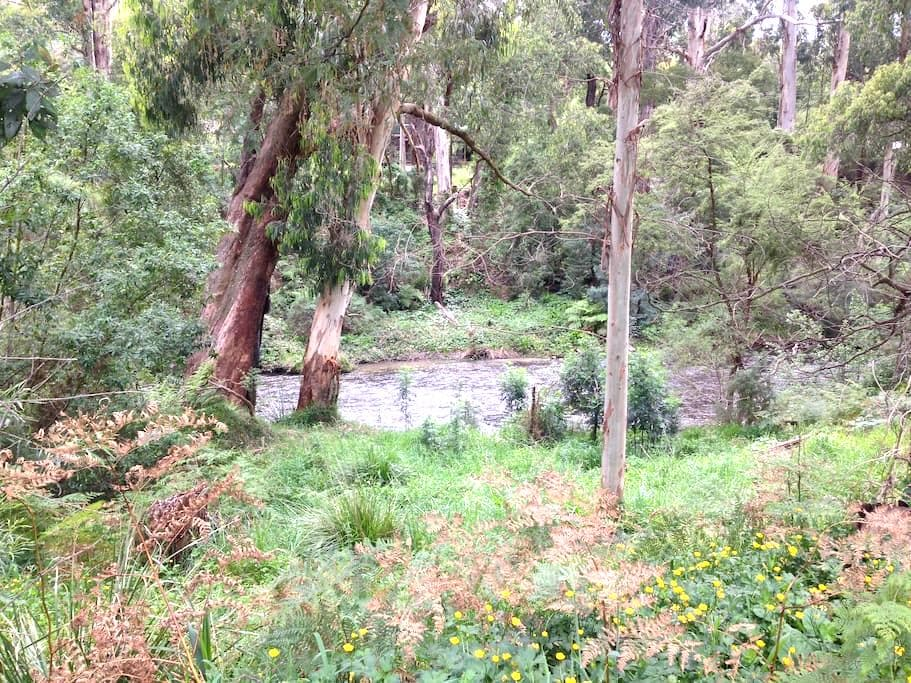 Cosy Cabin By The Yarra River - Millgrove - Dom