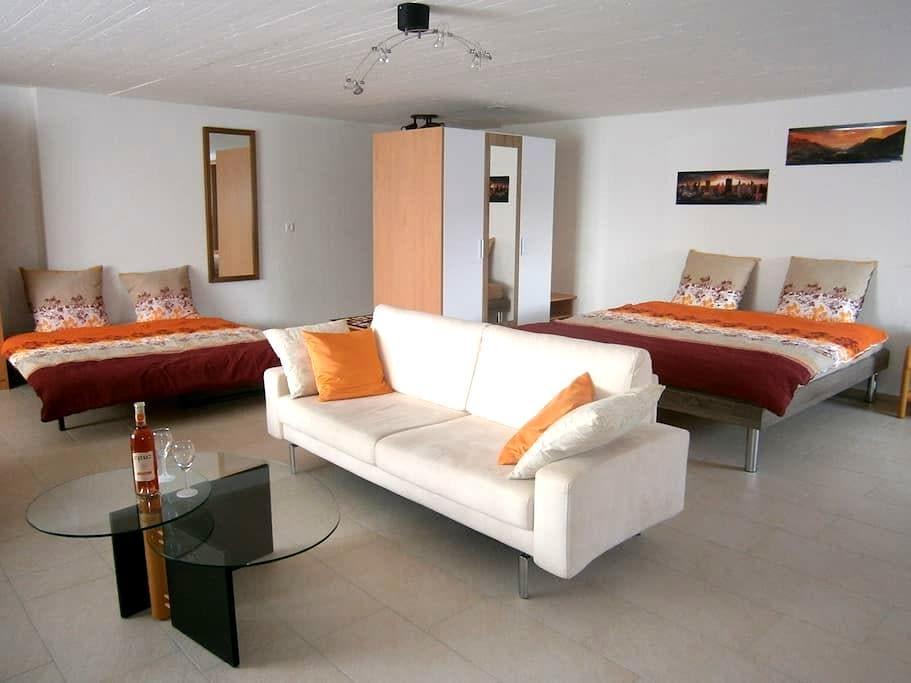 Modernes, 63m2 Studio mit Küche - Gommiswald