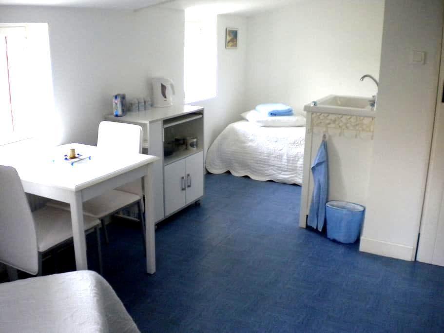 Own entrance, spacious single room - Bazas - House