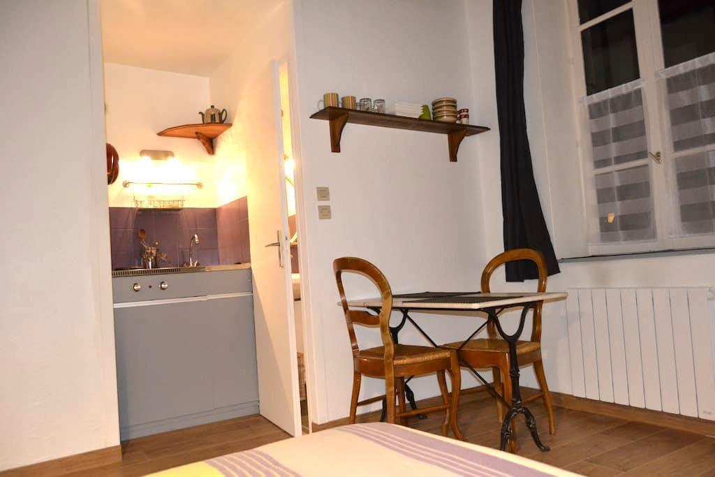 Studio rénové centre ville Dijon - Dijon - Apartemen