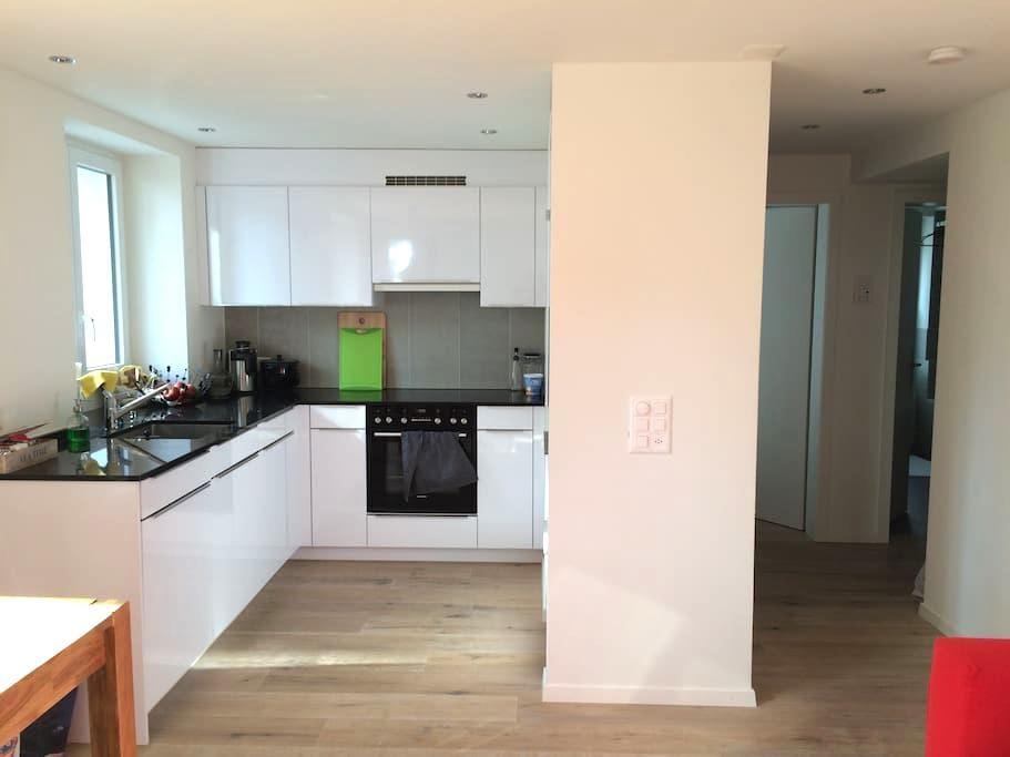Cosy flat in central Zurich - Zürich - Apartment