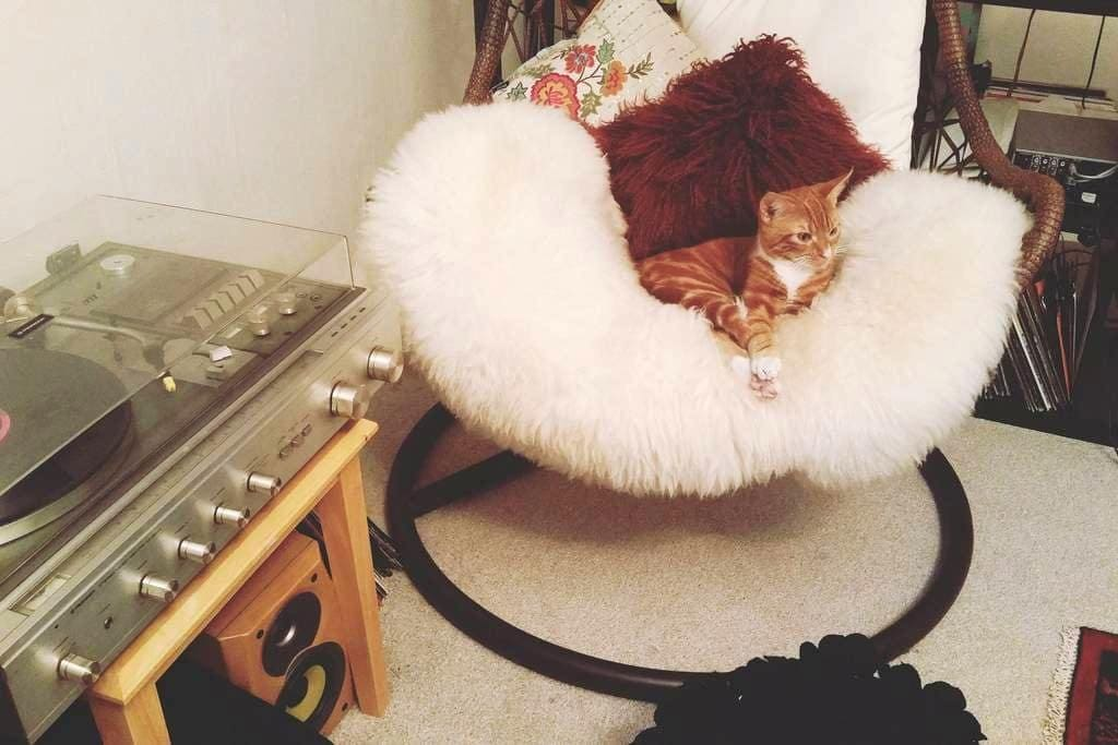 2 x Double Bed Bedroom //Welcome to Cosy Corner♡ - Glasgow - Apartment