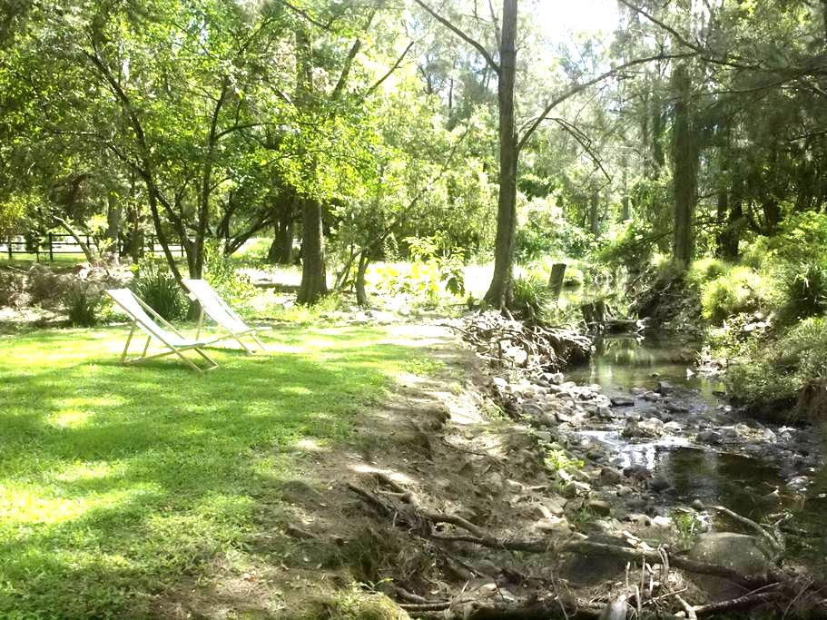 creekside treehouse - Cedar Creek - Rumah