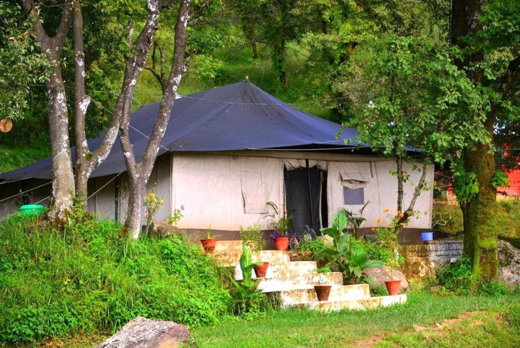 Dharamshala Green Getaway - Dharamshala