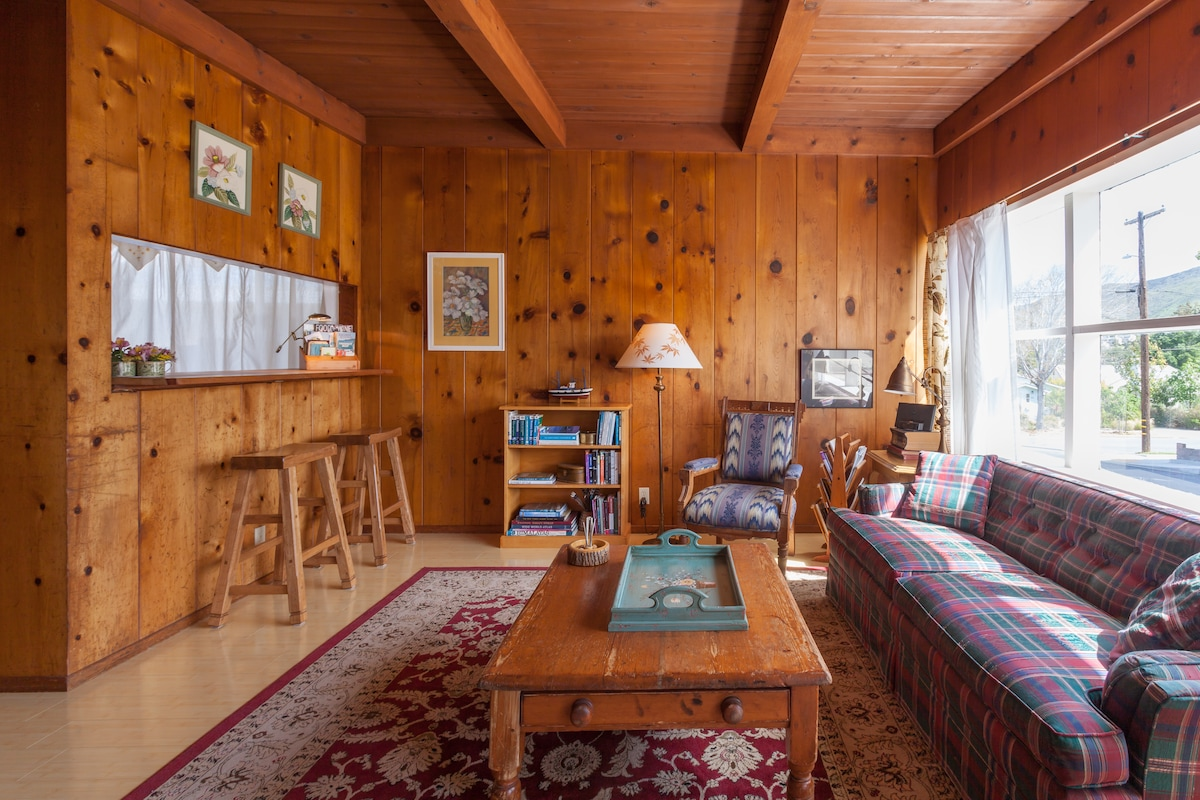 Comfy living room with double sofa bed (memory foam enhanced :), breakfast bar, vintage knotty pine circa 1955.