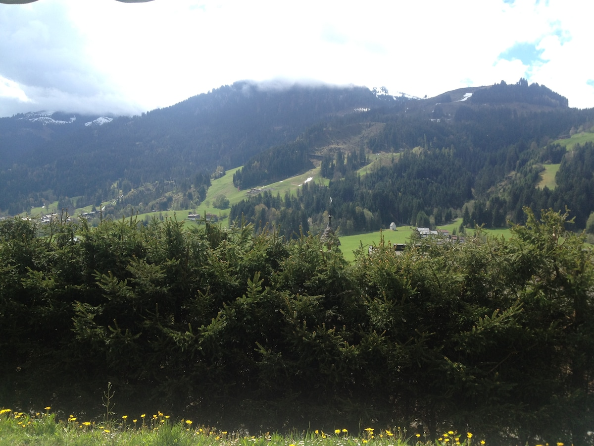 PANORAMA  STREIF SOMMER