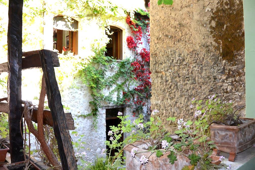 Agriturismo,B&B,Hotel,Villa and more Paestum for 2 - Paestum-Giungano - Bed & Breakfast