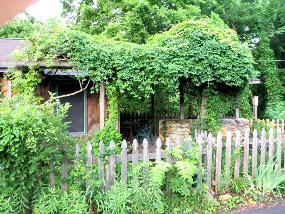 Walk to town, On AT, WiFi, Pet Friendly! Chickadee - Hot Springs - Kabin