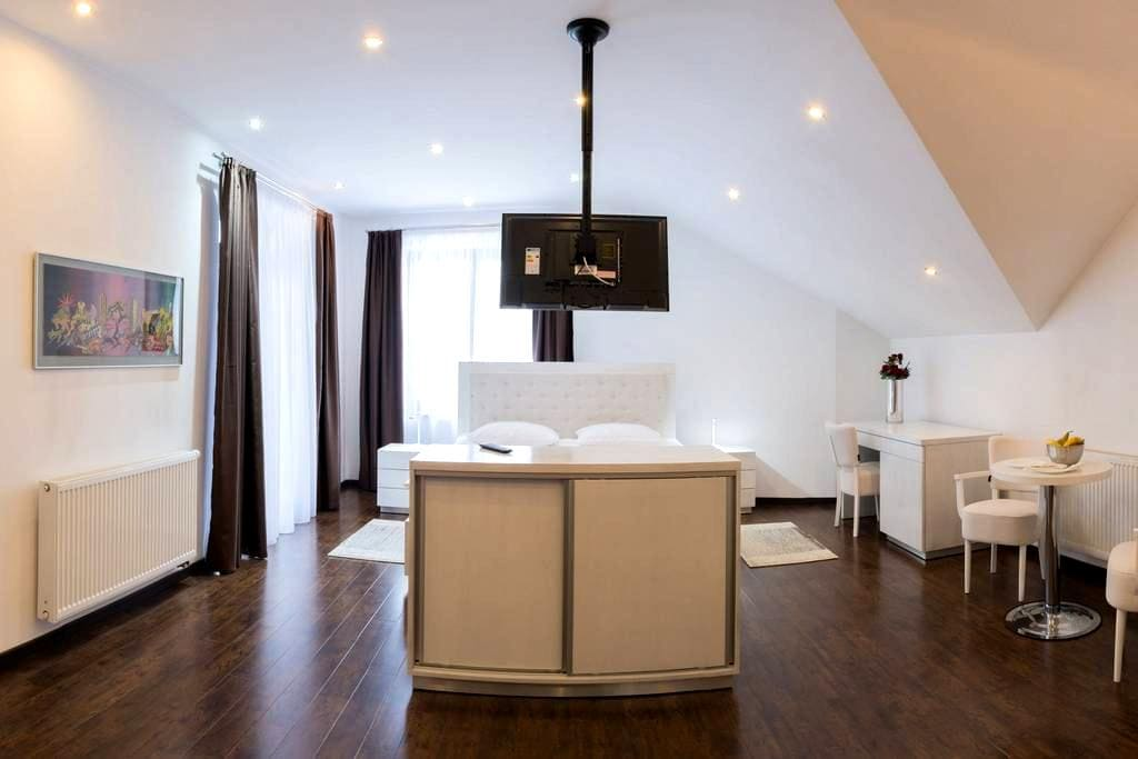 Executive Room with Bathtub and Shower, South view - Târgu Mureș - Bed & Breakfast