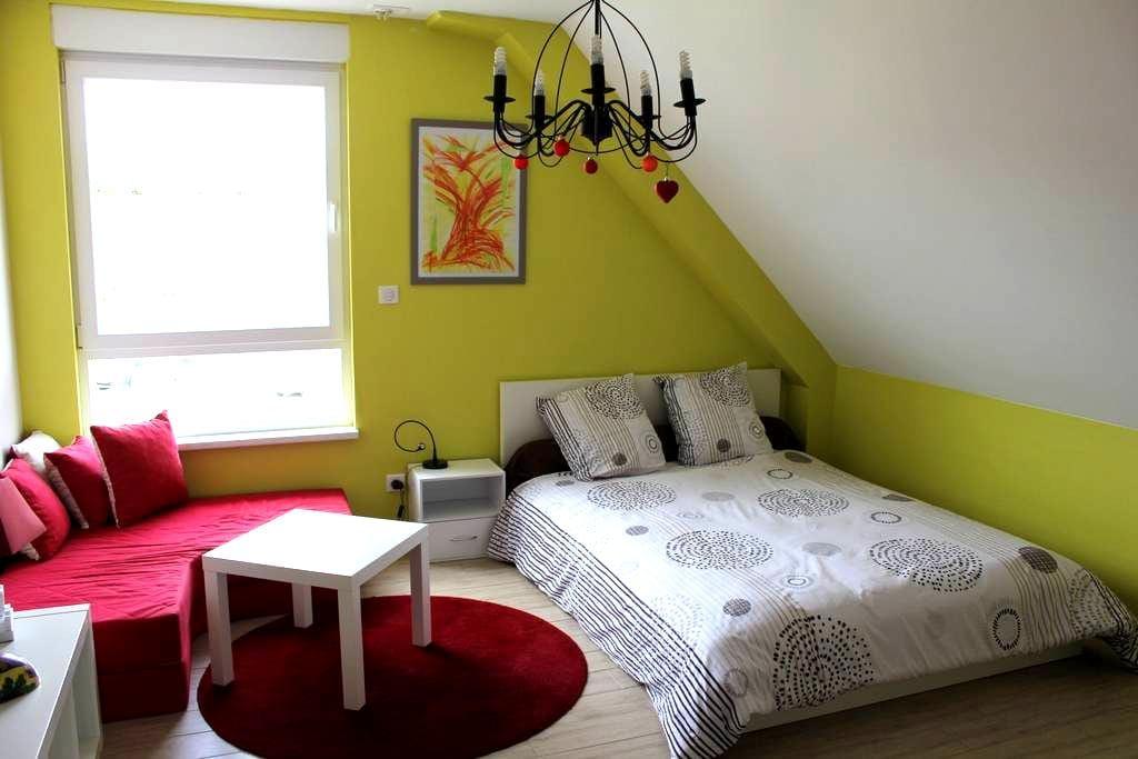 Zimmer mit Doppelbett und eigenes Bad - Menchhoffen - Bed & Breakfast