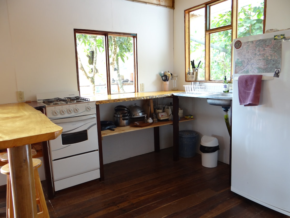 Fully bright and newly renovated kitchen with a view on the mountains and a mango tree !