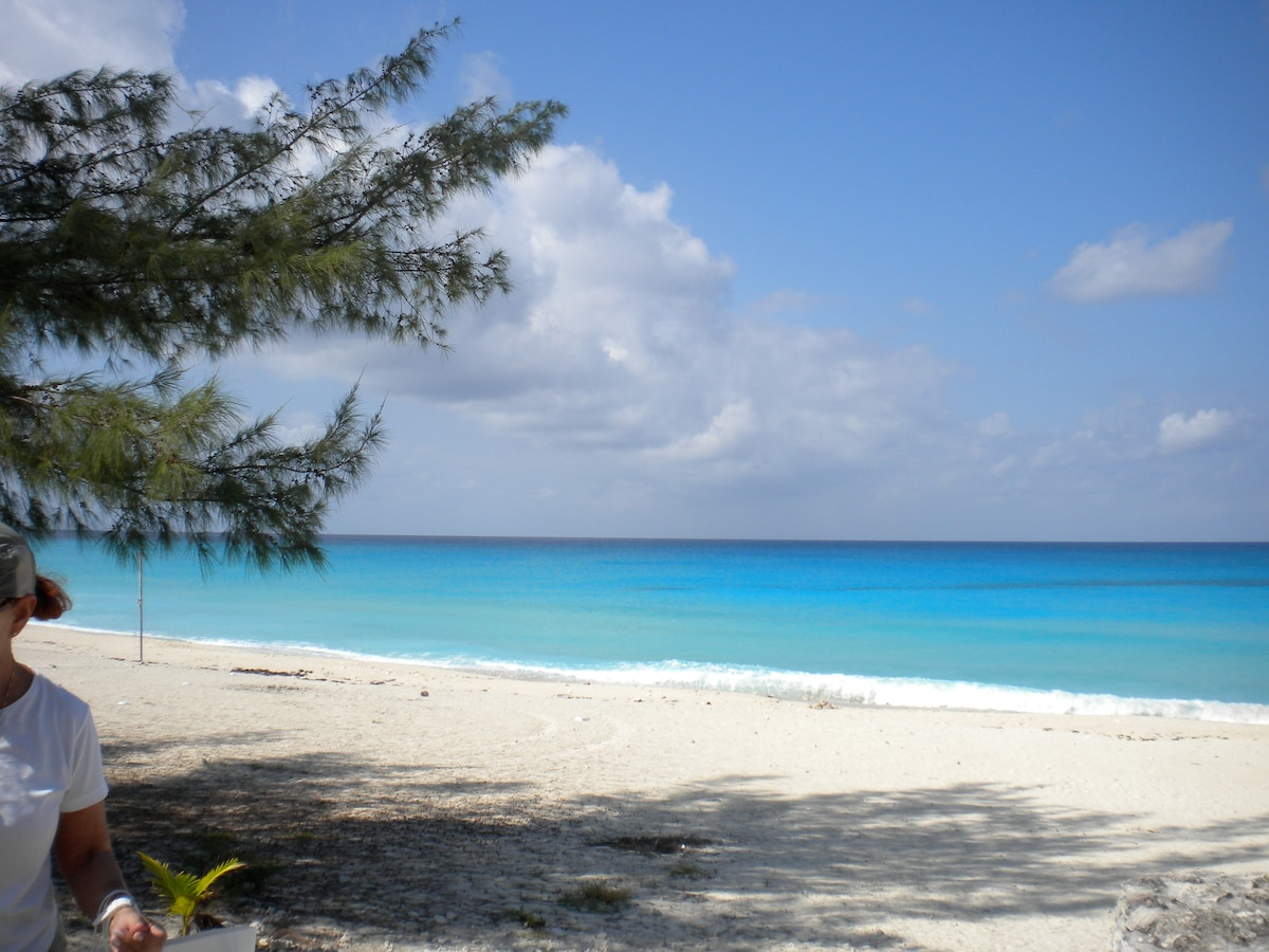 beautiful unspoiled beach a 30 second walk from condo........