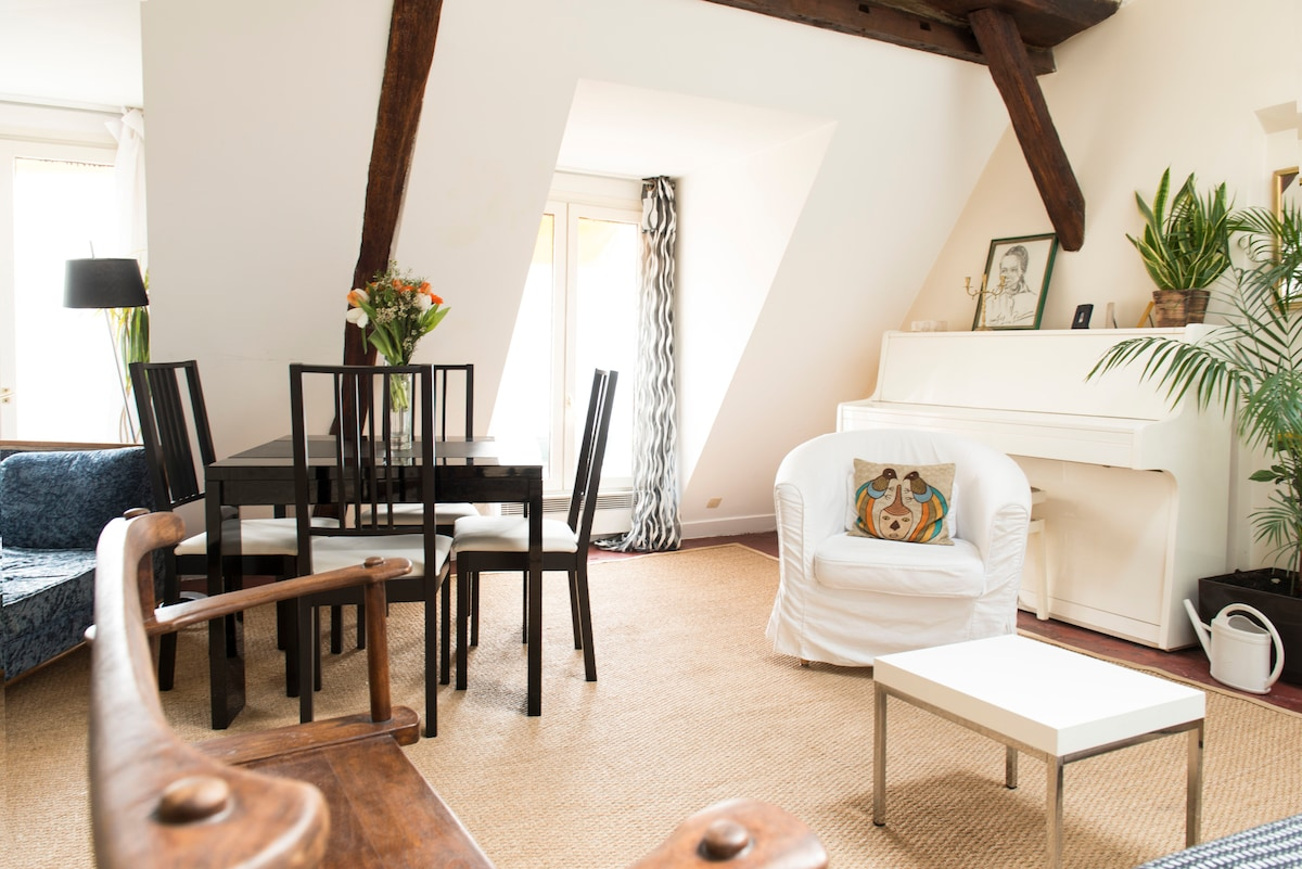 Peaceful flat under Paris roofs
