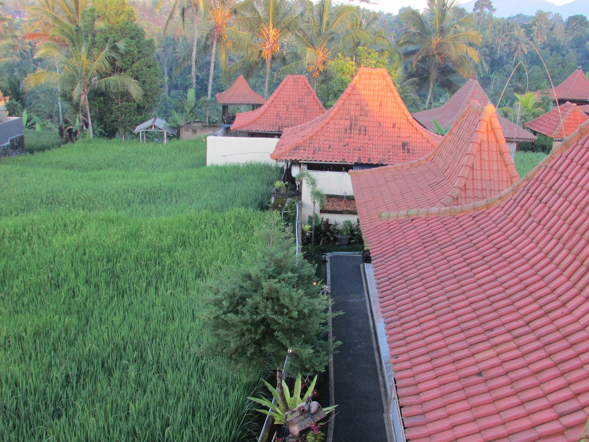 Rooms and joglos (cottages) in the rice fields