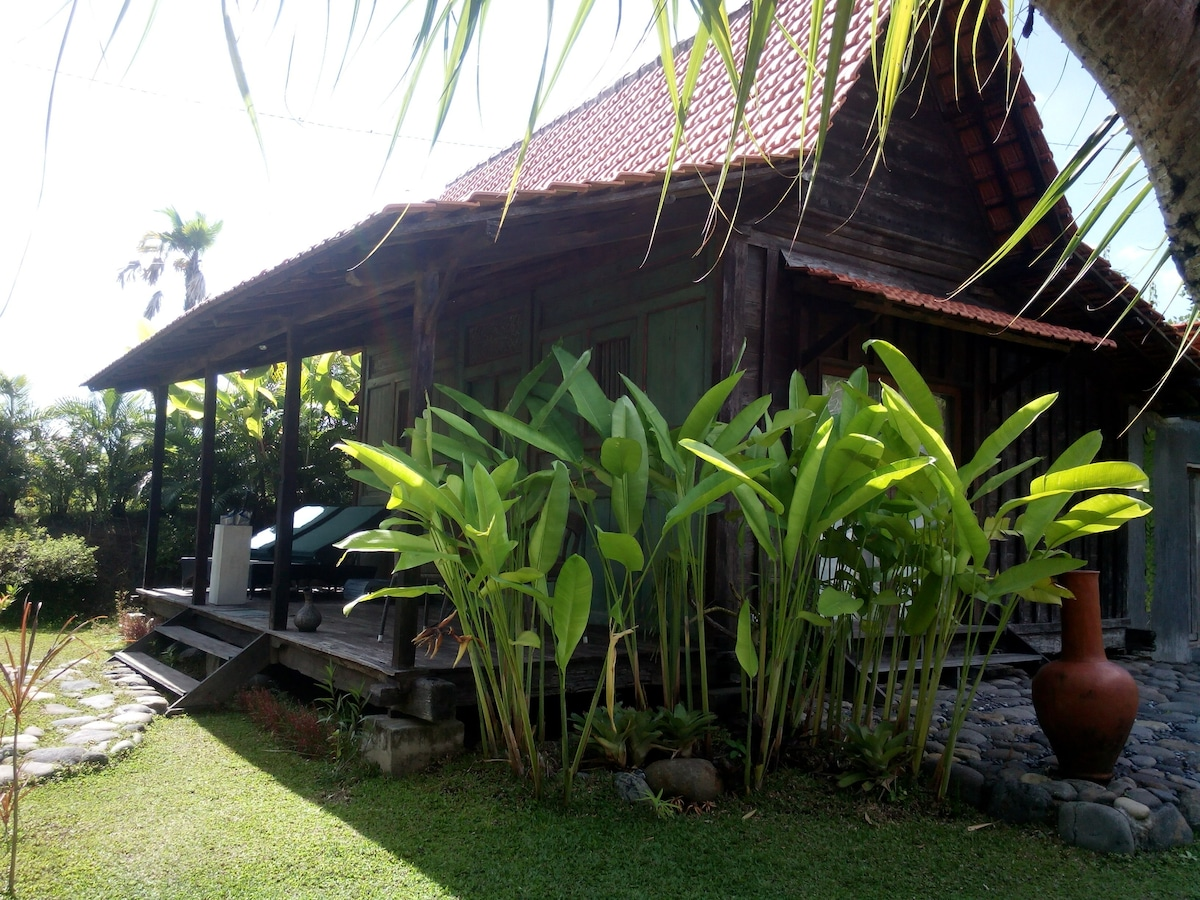 Traditional cabin set in Rice Field