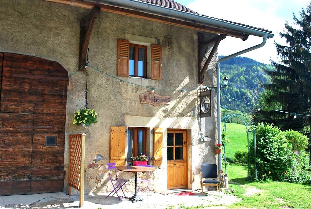 Duplex  Annemasse - Geneva - Annecy - Beaumont