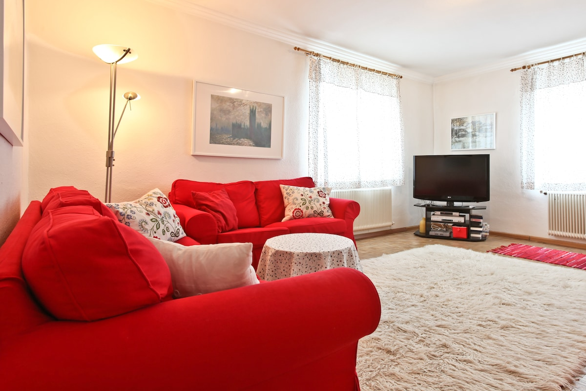 cosy 3 room apartment ,wifi Parking