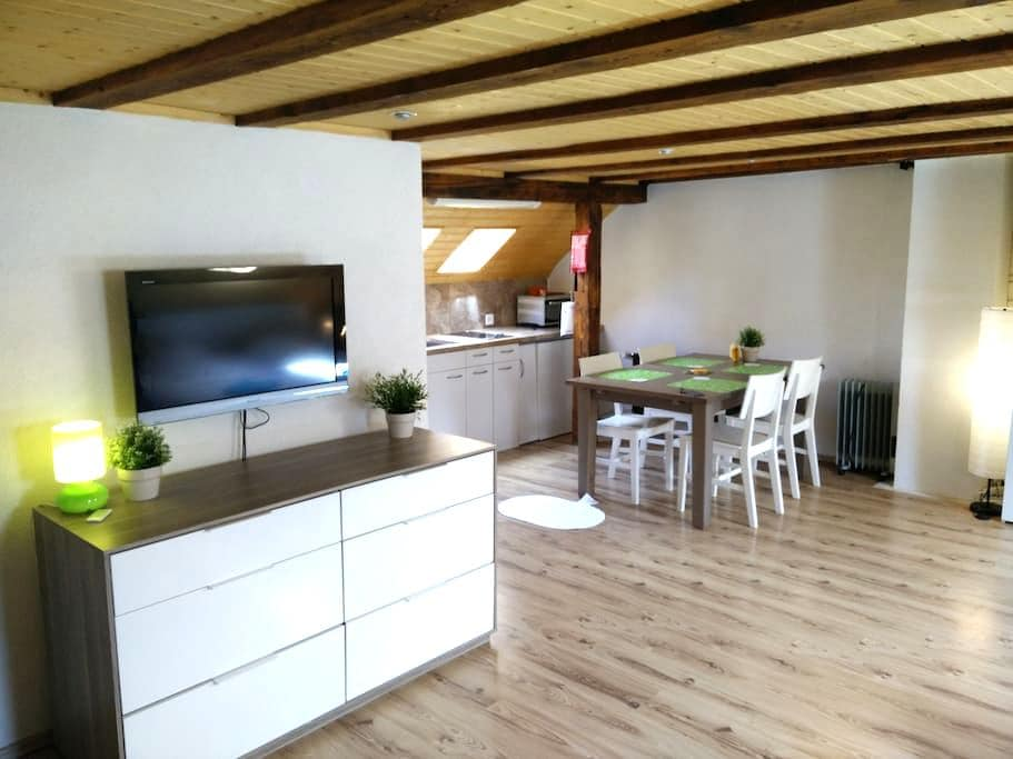 Cozy Studio for up to 3 persons - Zürich - Apartment