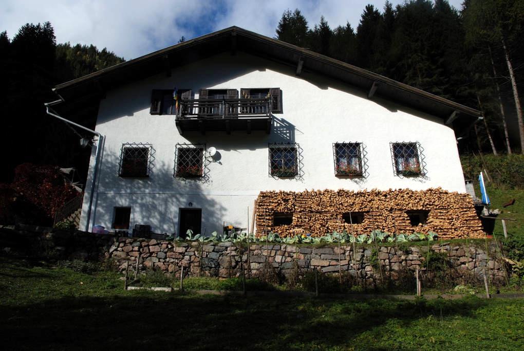 Le tue vacanze in un maso Trentino! - Predazzo