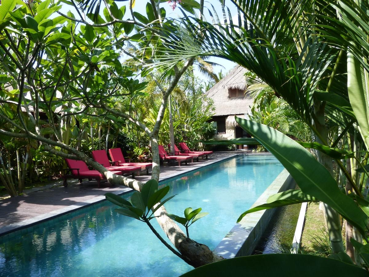 Luxury2BR+2BA+POOL Villa Budi $152