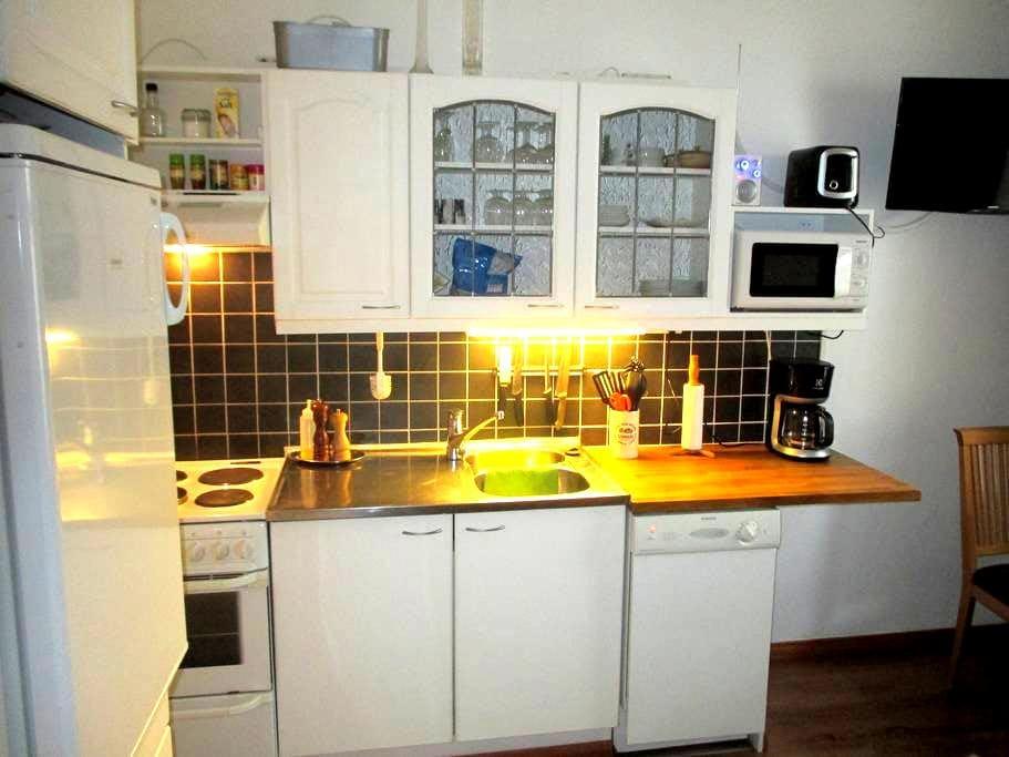 A Compact City Studio - Helsinki - Appartement