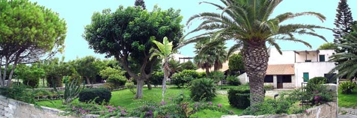 grande giardino con prato
