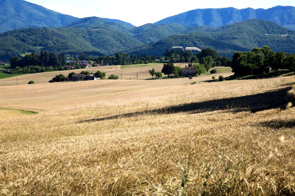 Tuscany, Florence, Mugello Apartment - Borgo San Lorenzo - Apartament
