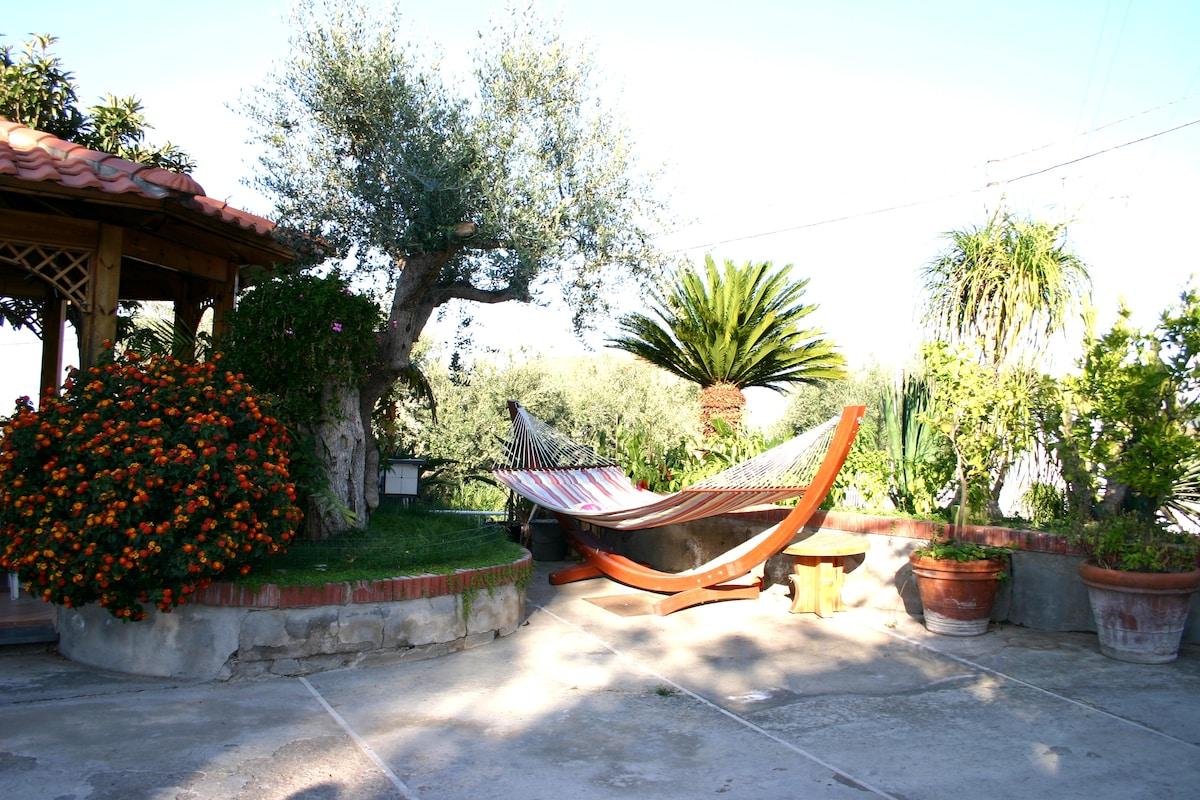 The hammock in the garden