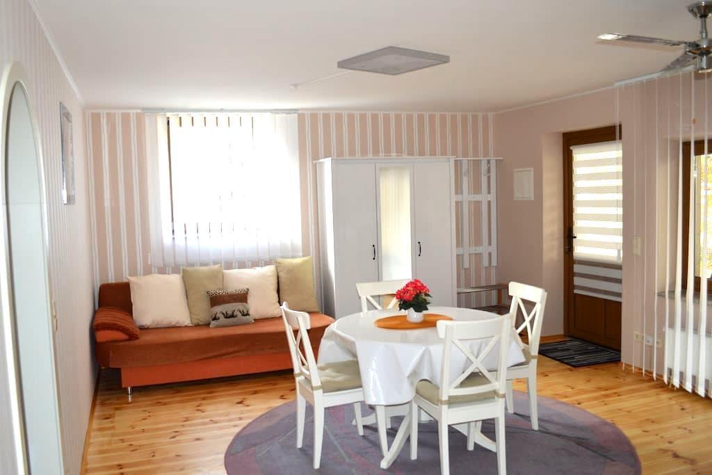 Ruhige idyllische Ferienwohnung - Hinterweidenthal - Lyxvåning