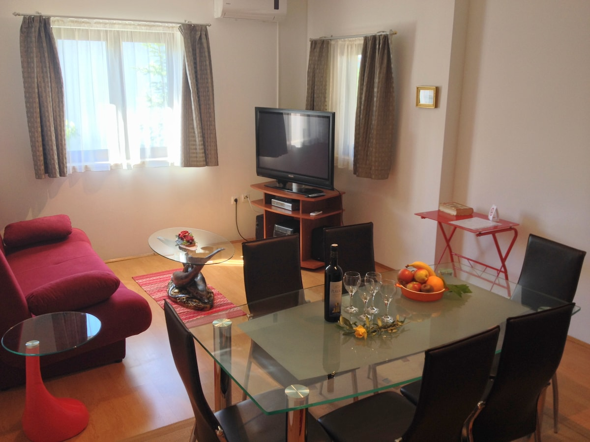 The spacious living and dining room with a large flat screen TV and comfortable pull-out couch.