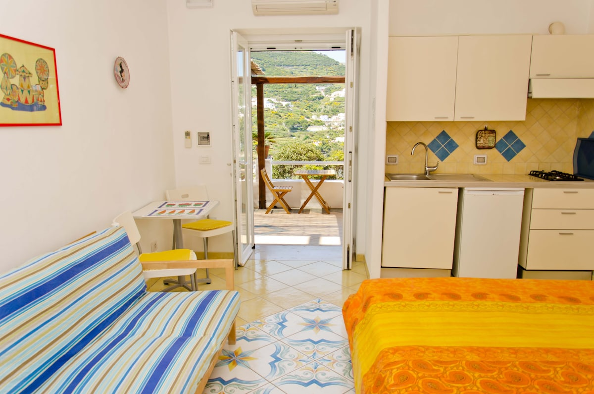 Punta Verdella: a large self-contained room with kitchenette, bathroom en-suite and view!