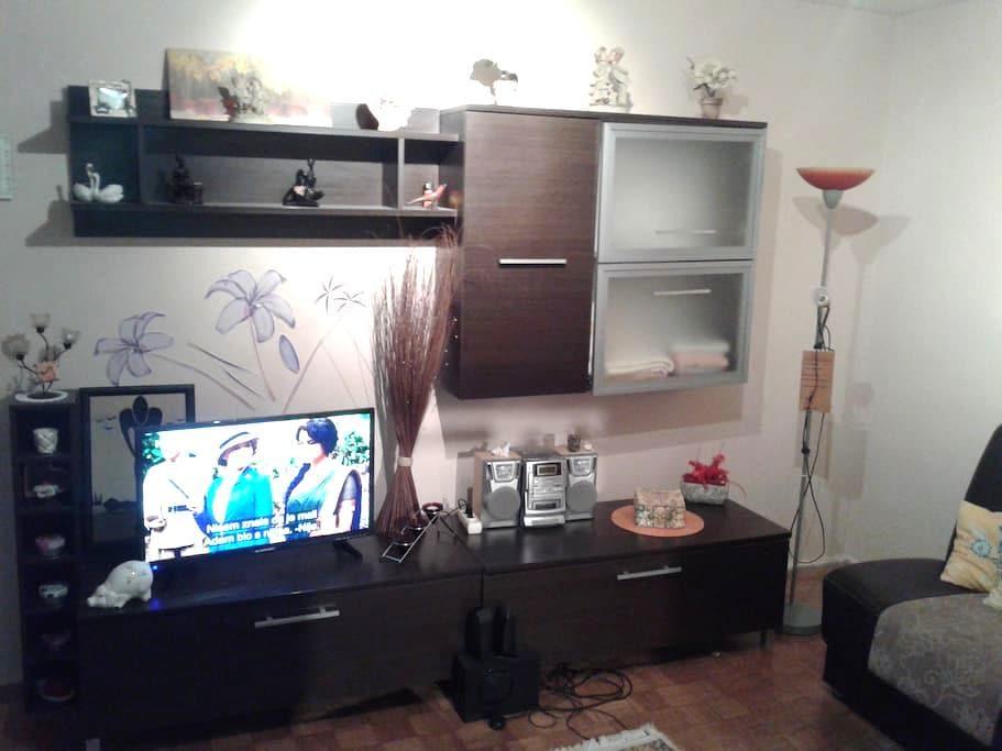 Pleasant apartment in Osijek - Osijek - Appartement