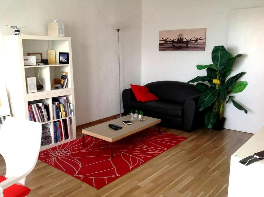 T2 super agréable plein centre siam - Brest - Lyxvåning
