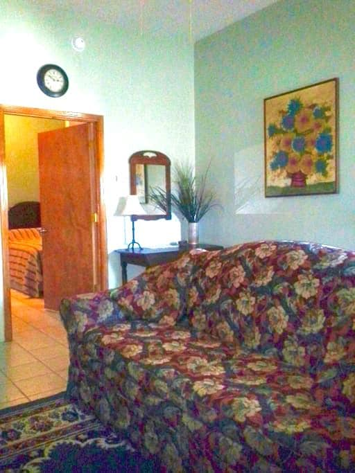 Cozy Corner Apt near SIU-Food-Bars - Carbondale - Apartemen