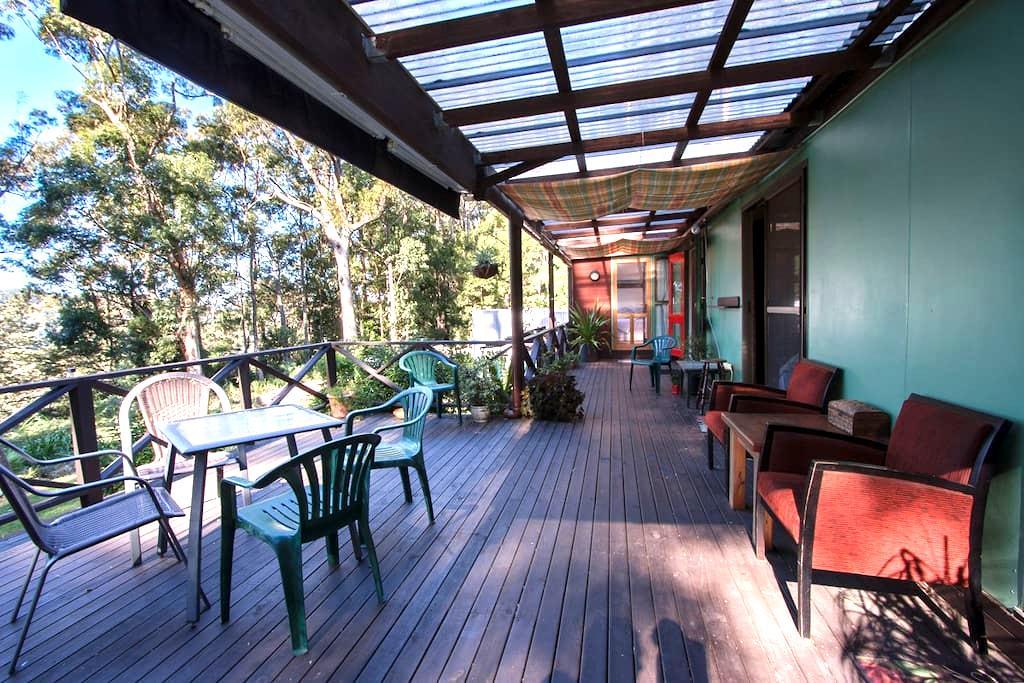 Rainforest Cabin - Foxground - Kabin