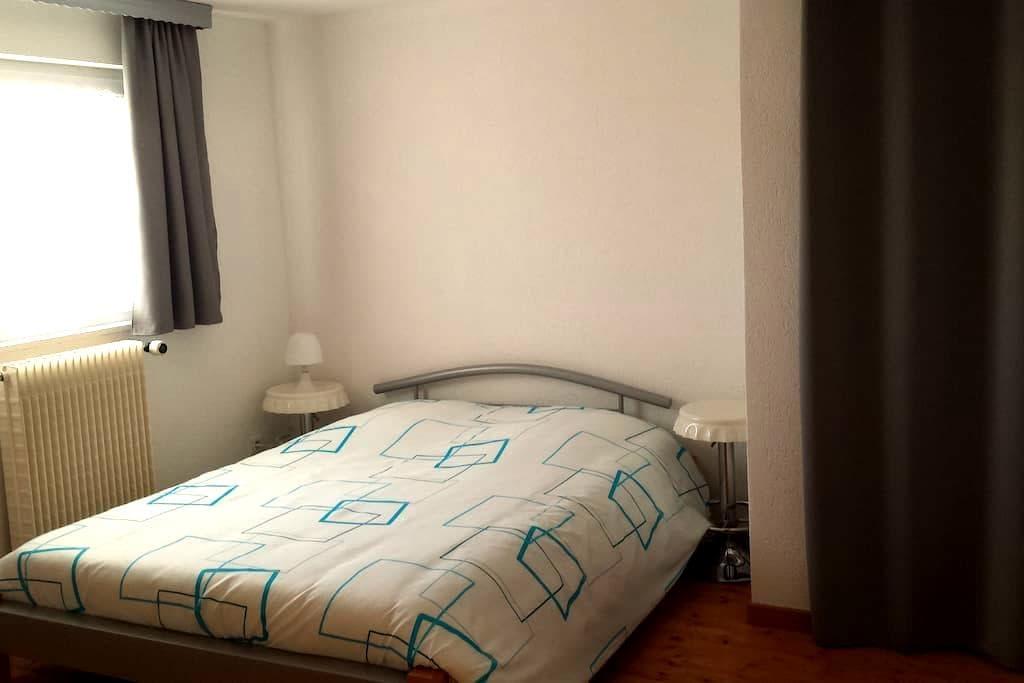 Logement entre Colmar et Strasbourg - Erstein - Apartament
