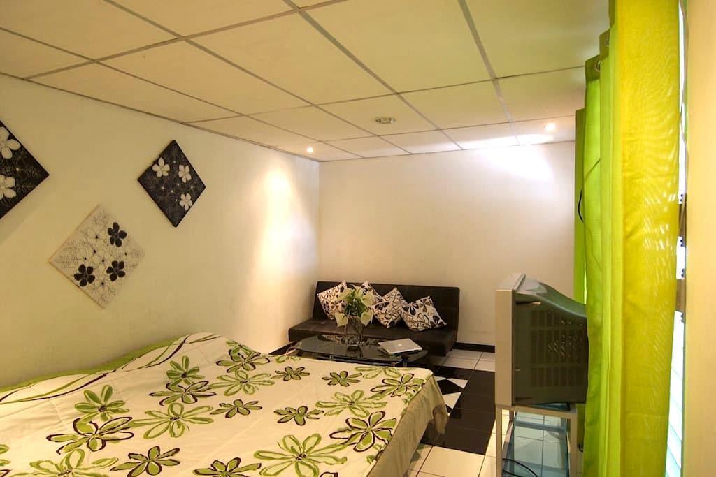 CHARMING APARTMENTS MARENA MANAGUA  - Managua - Appartement