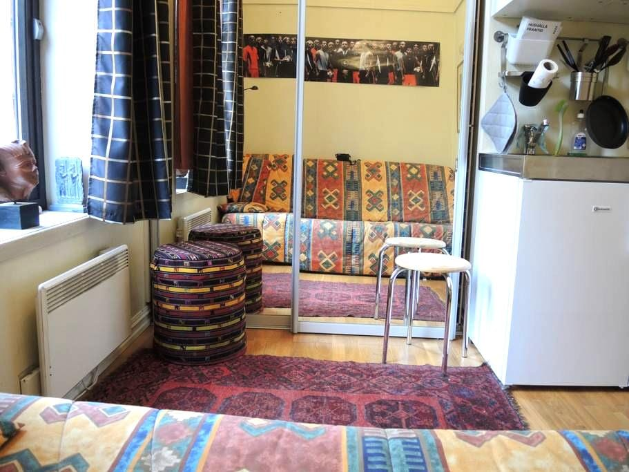 Studio apartment - Oslo - Pis