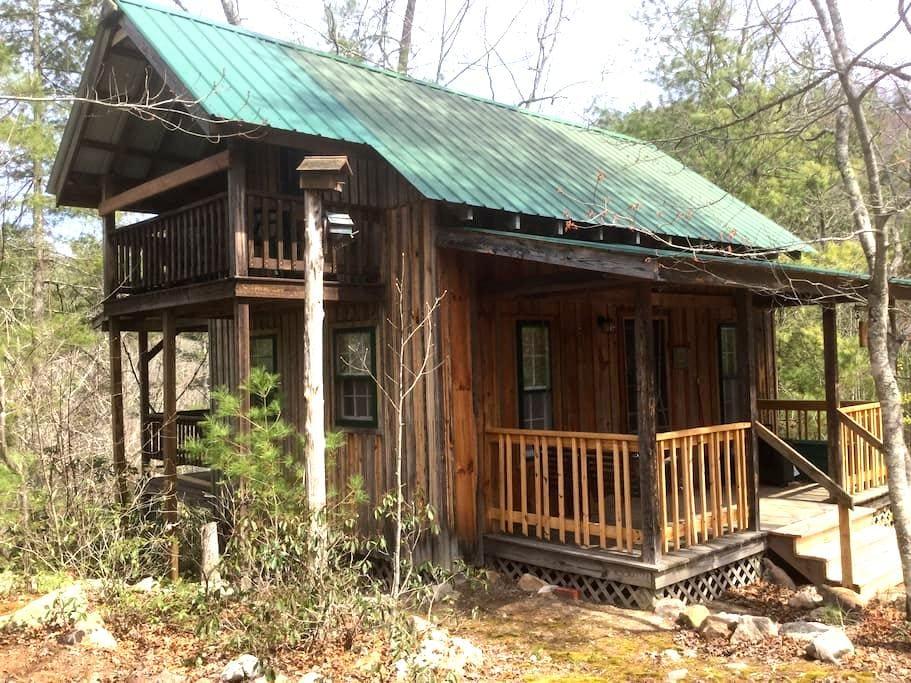 Cozy Forest Mountain Cabin #2 - Falcons Nest - Del Rio