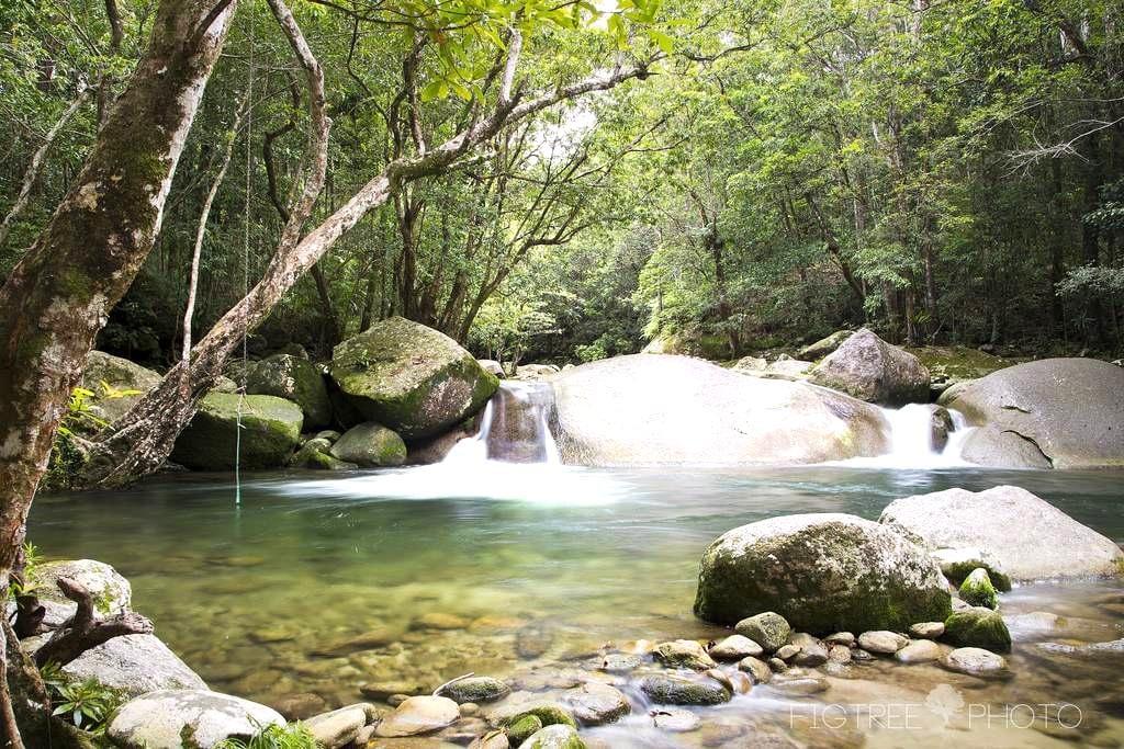 Rainforest retreat near Cairns - Fishery Falls - Srub