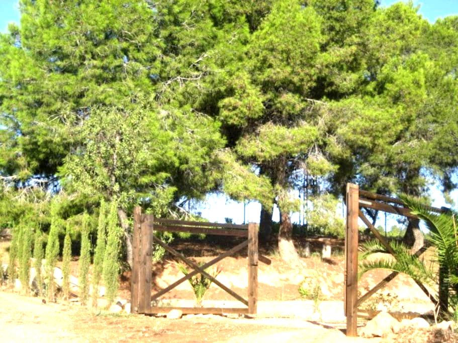 PRIVATE BUNGALOW  - Close  Valencia - Pedralba - Ξυλόσπιτο