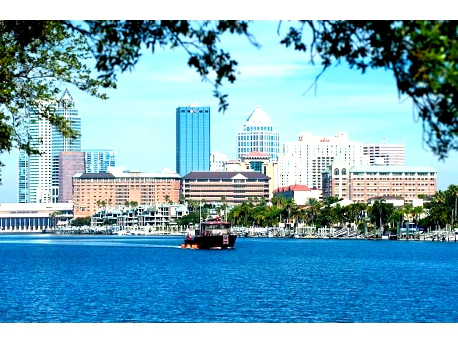 Awesome Downtown Tampa- CHIC Room! - Tampa
