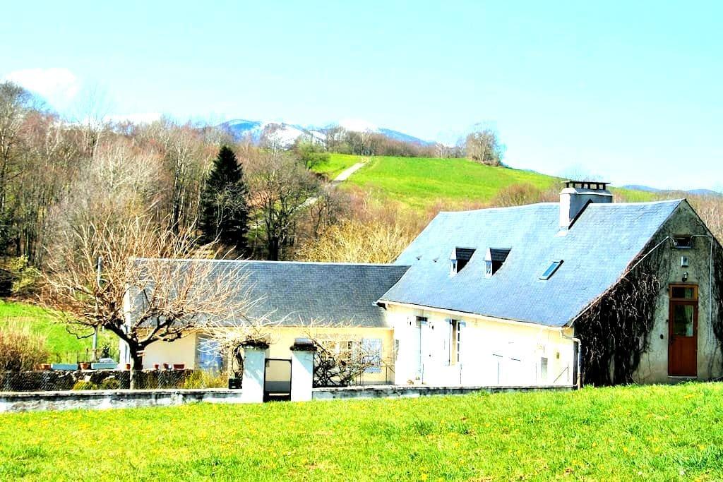 2 bedroom gite in Hautes Pyrenees - Avezac-Prat-Lahitte - Huis