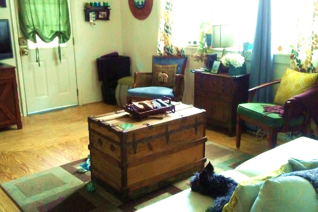Cozy Bedroom in Bohemian Apartment - St Petersburg - Apartment