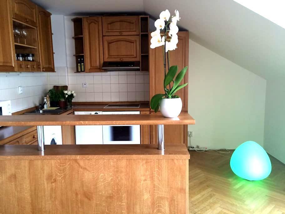 Modern Duplex Loft - Prague - Loft