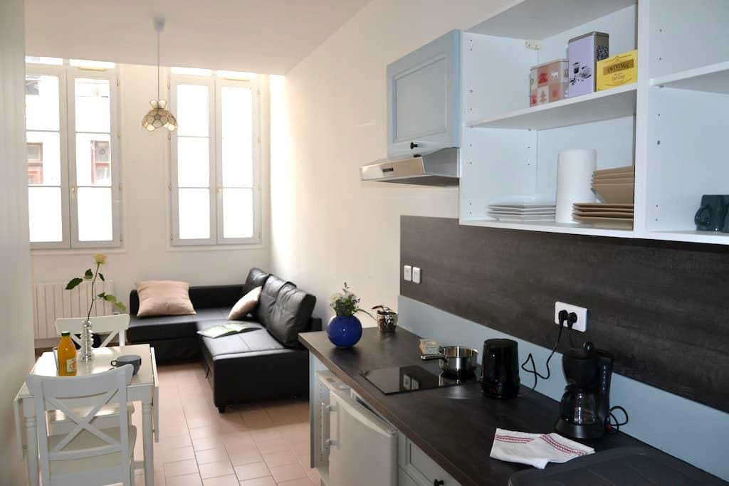 Vacation rental in arts district - Arras - Appartement